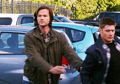 [gifset] Waving Sam. Hi! What? No, my brother didn't just pull out a gun to shoot a pigeon. We're perfectly normal. #Supernatural #DogDeanAfternoon 9.05