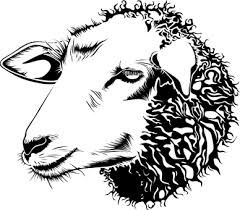 image result for sheep face template norma pinterest sheep