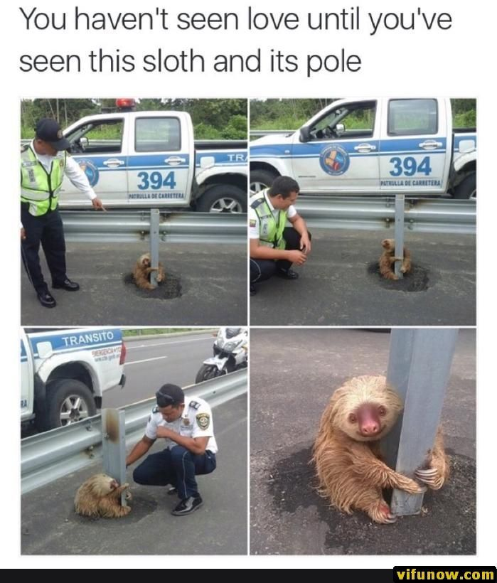 28+ Funny Memes Of Today's – #funnymemes #funnypictures #humor #funnytexts #funnyquotes #funnyanimals #funny #lol #haha #memes #entertainment #vifunow.com