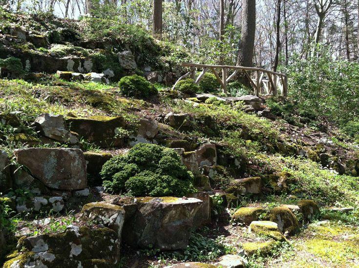 best 25 hillside garden ideas on pinterest sloped garden terraced landscaping and terraced. Black Bedroom Furniture Sets. Home Design Ideas