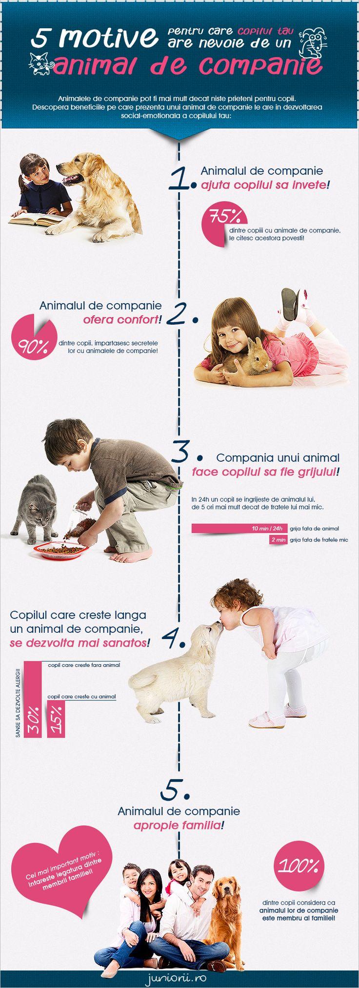 5 motive pentru care copiii au nevoie de un animal de companie