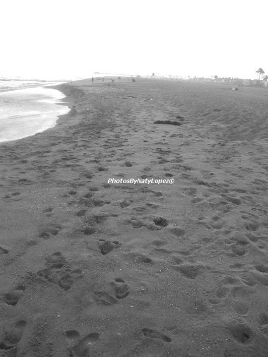 """""""Our memories of the ocean will linger on, long after our footprints in the sand are gone.""""    -Unknown"""