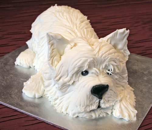 Westie Cake...my friend Pamela would love this!!