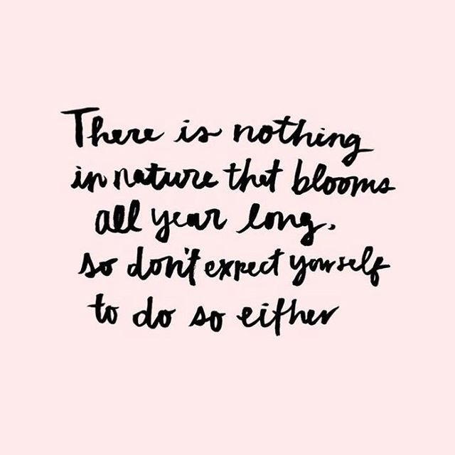 I saw this on Pinterest and it really resonated with me. I've been feeling under the weather for weeks now due to a virus and it's really been getting me down but we can't all be 100% for 100% of the time and we need to stop being so hard on ourselves  ✖️ #mondaymotivation #quote #motivationmonday #positivevibes #pinterest #bblog #makeuplife #makeuptalk #makeupporn #beautycommunity #makeupaddiction #makeuptime #discoverunder100k #beautyobsessed #igblogx #makeuplove #makeupnews…