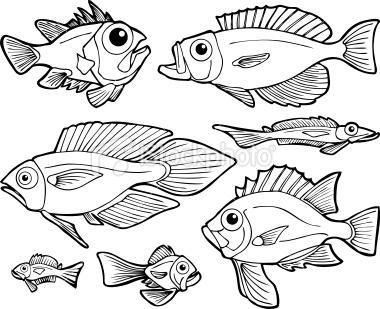 Fish Line Art Royalty Free Stock Vector Art Illustration