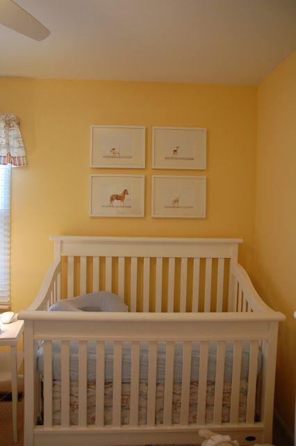 Hanging Plants In Nursery Baby Rooms