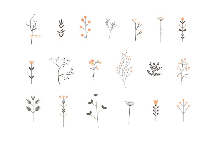 Collection of branches and flowers plus 8 romantic invitations.
