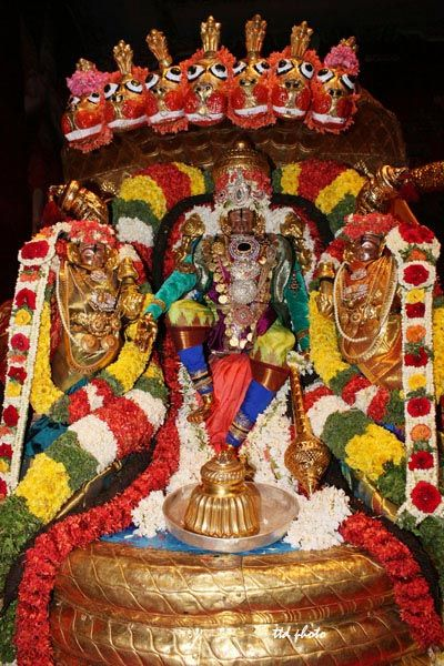 Lord Sri Rama, seethamma and Lakshmana's processional deity were taken for a procession on Peddasesha Vahanam on the first day of Sri Kodanda Rama swamy Temple ongoing Annual Brahmotsavam in tirupati.