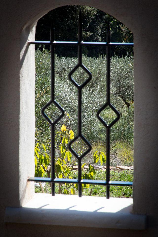 Nature à La Roquebrussanne