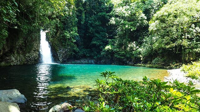 This Amazing Place Is Called Pozareyna You Can Find It In Veracruz Mexico Just Outside Of Catemaco Go Ther Sustainable Travel Travel Pictures Travel Blogger