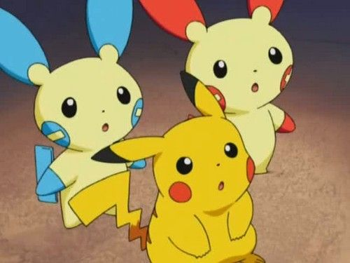748 best images about Pikachu :3 on Pinterest | Cute ...
