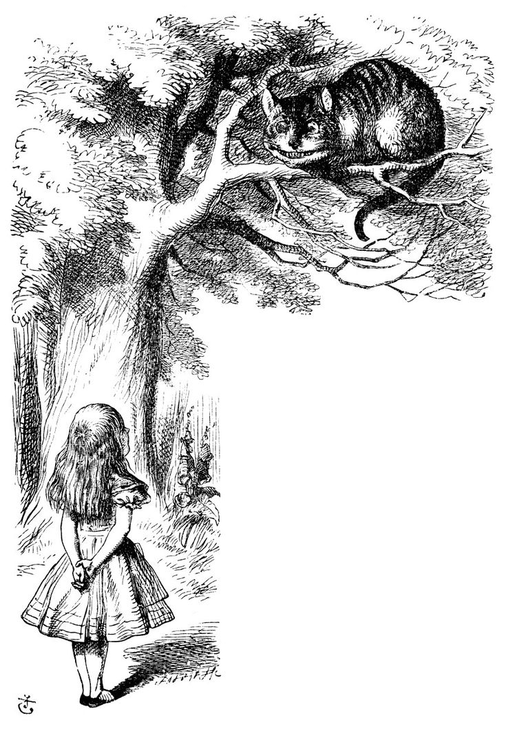 I like the original book illustrations by Sir John Tenniel.  Besides, we're all mad here....