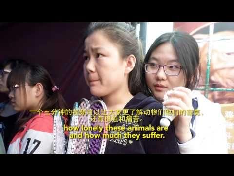 PETA Asia Takes Shocking Exhibit to Chinese Colleges PETA Asia-Pacific – Hot & Sour Scoop