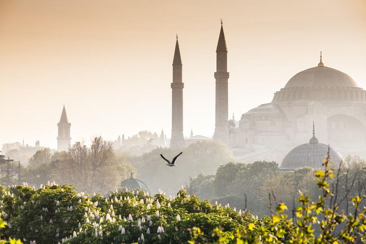Sultanahmet Camii / Blue Mosque, Istanbul, Turkey by Matthew Dixon on 500px