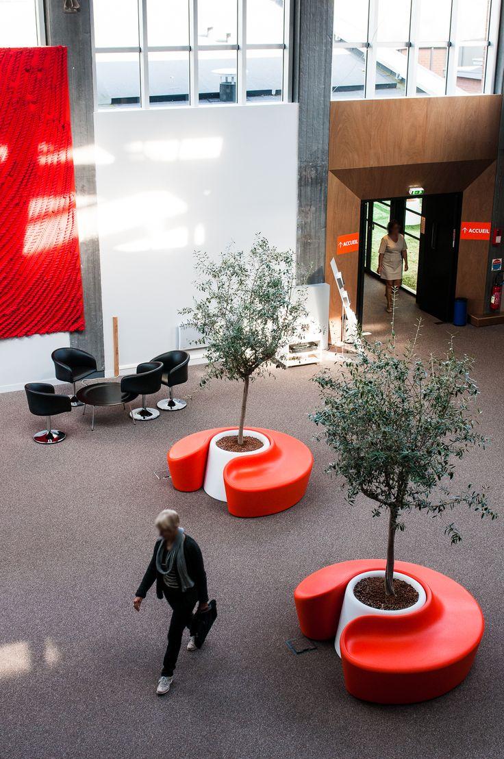 nature vegetale location et entretien de plantes arbres pour entreprise r alisation d. Black Bedroom Furniture Sets. Home Design Ideas