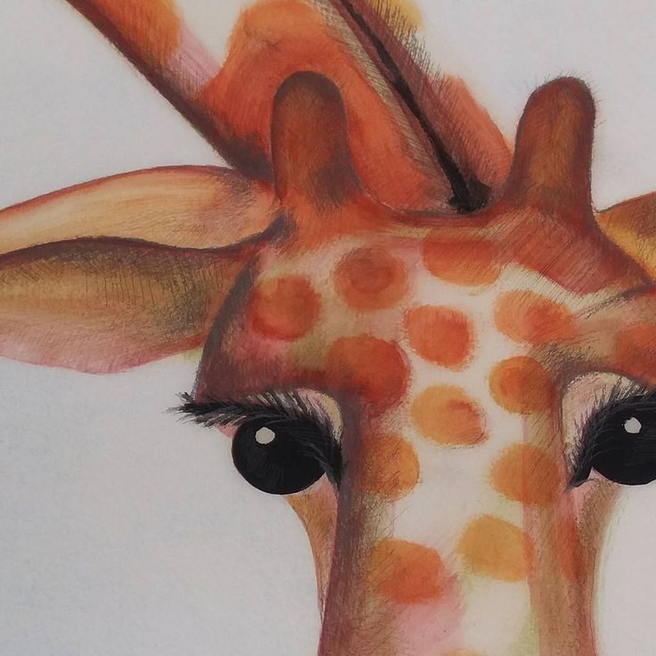 Giraffe | Detail of mural for kids room | Ansofie Jordaan Art | Paintings & Art Classes