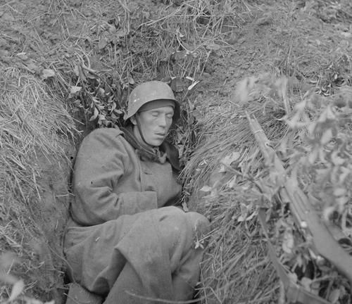 Exhausted man sleeping in his hole after retreat to VT-line. Kivennapa, Karelian Isthmus, 11 June 1944.