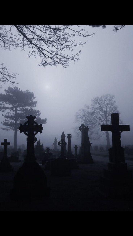 1531 best cemeteries images on pinterest graveyards cemetery