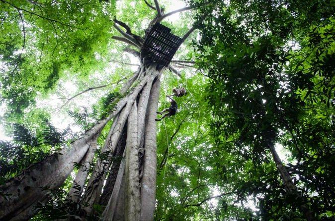 Chiang Mai Rainforest Canopy Zipline Adventure  #PrivateTours #CityTours #Thingstodo #Activities #Tours #ChiangMai #Thailand #RainforestCanopy