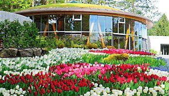 The Rose Carousel #carousel #butchart #butchartgardens #explorebc