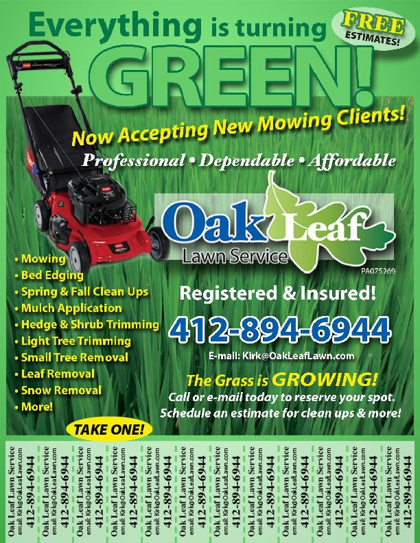 lawn care flyers advertisement