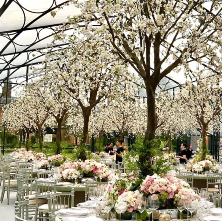The dome of the towering marquee, shipped over from Belgium especially for the occasion, was almost filled with full-sized flowering cherry trees