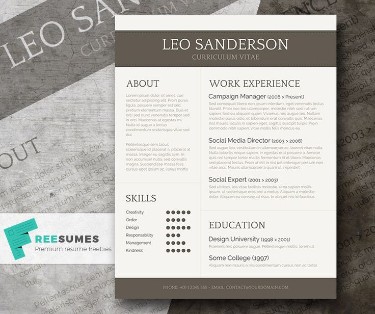 conservative and creative free word cv template - Free Word Resume Template