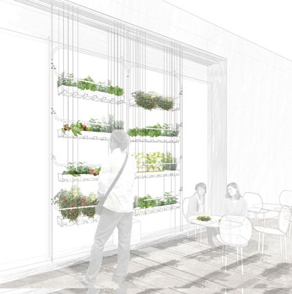Inspired - On the small scale for the more grounded inner city residents tempted to embrace the urban agriculture trend imposed by the recent credit crunch and the soaring prices of food supplies, London based practice Bohn & Viljoen Architects (in collaboration with Hadlow College) has developed a suspended vertical structure for growing vegetables. (Blueprint, 2009)