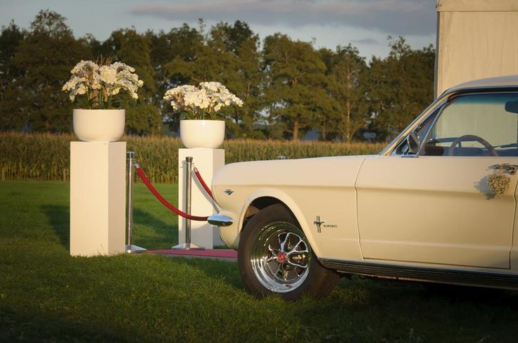 Decoratie entree feesttent bruiloft met witte Orchideeën.