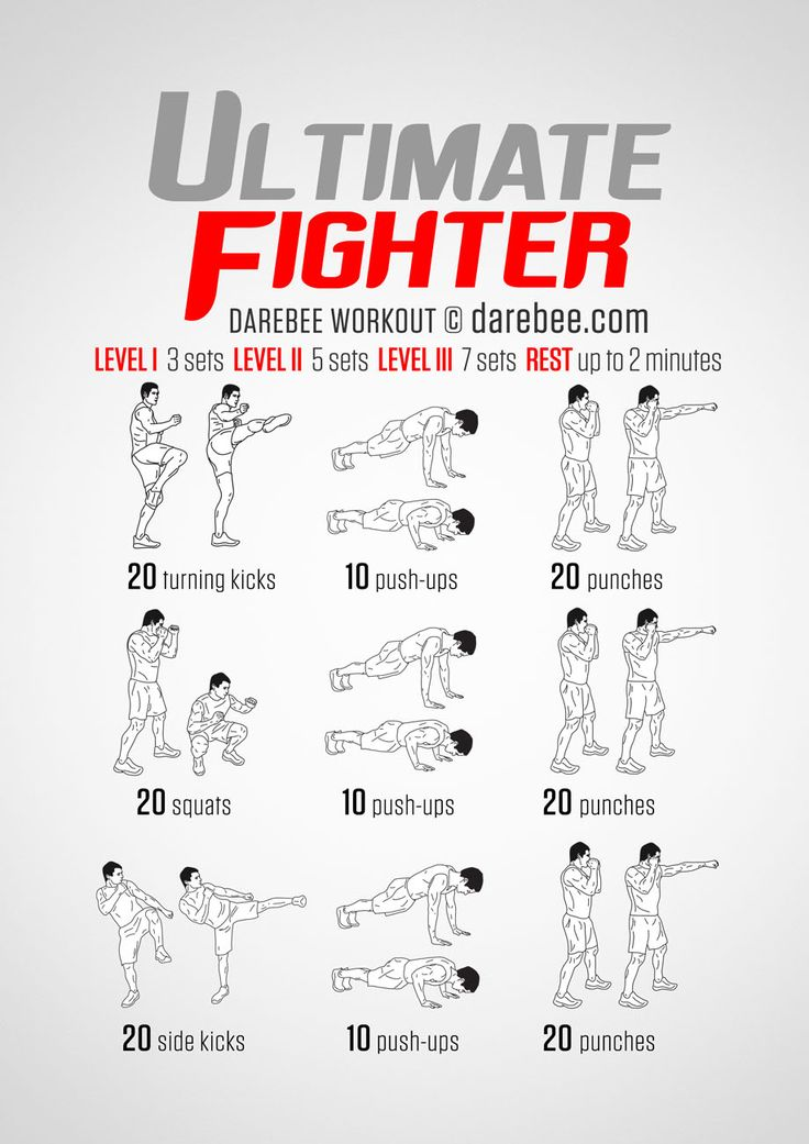 Ultimate Fighter Workout