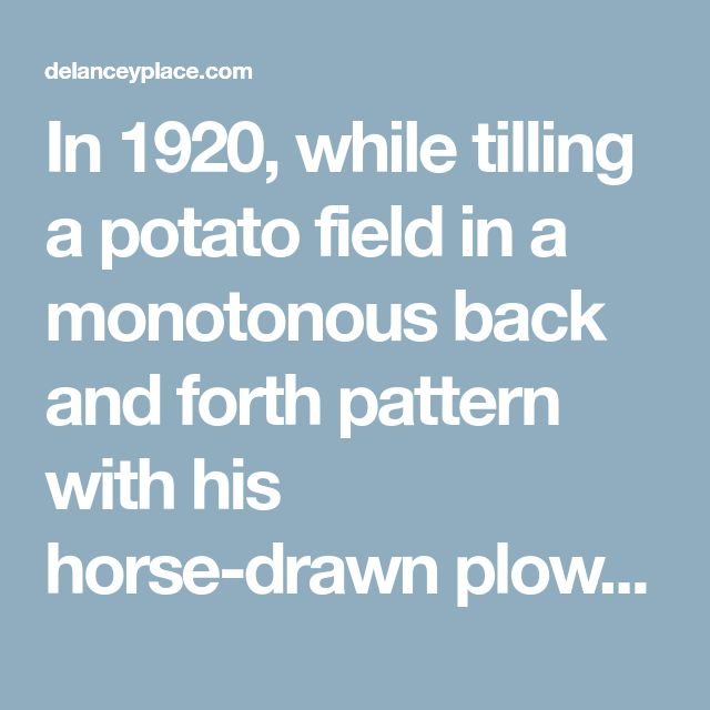 In 1920, while tilling a potato field in a monotonous back and forth pattern with his horse-drawn plow, Phil imagined that an electron beam might scan an image in exactly the same way, moving across the image line-­by-line....