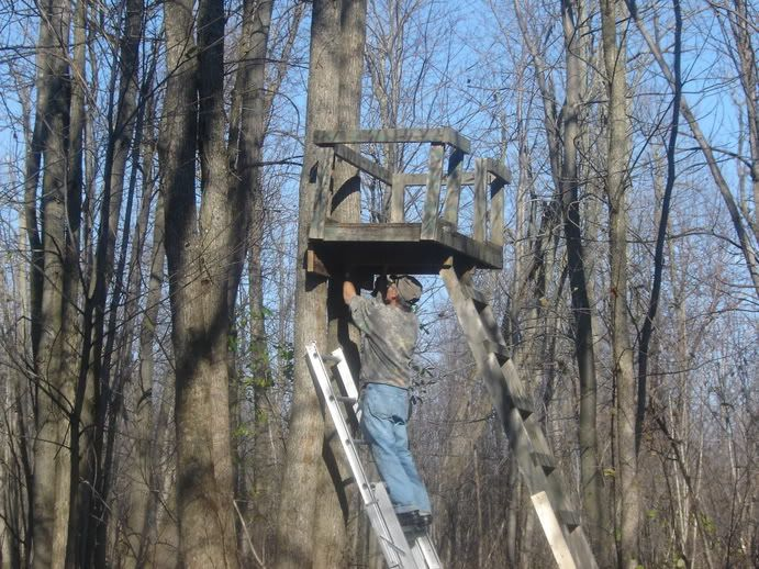 Best 25 Deer Stands Ideas On Pinterest Hunting Blinds