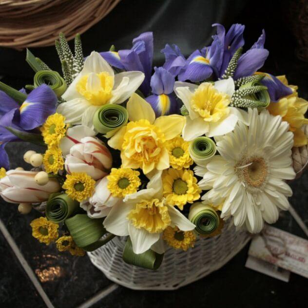 Тюльпаны, ирисы, гербера, нарцисы, вероника, хризантема, гиперикум.