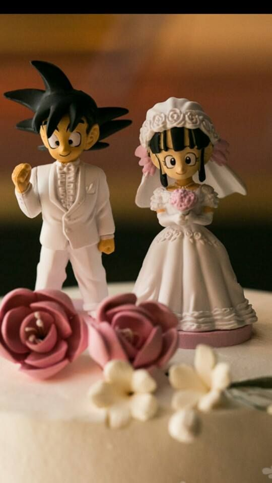Our cake toppers - Goku and Chi Chi from Dragon Ball Z (my fiance's favorite tv show)