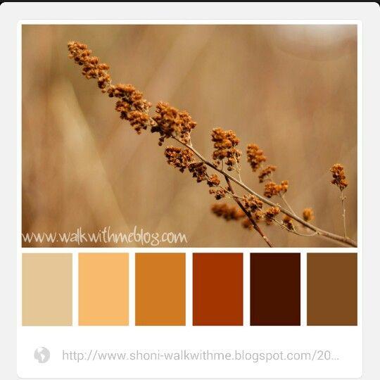 Wohnzimmer Farbschemata Farben Fr Farbpsychologie Kche Farbkombinationen Tuscan Colors Color Palate Warm