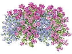 Epic Blumenkasten Mehr