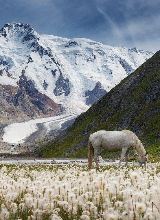 Valley of Unicorns, Kyrgyzstan http://www.travelbrochures.org/137/europa/off-to-liechtenstein-tour