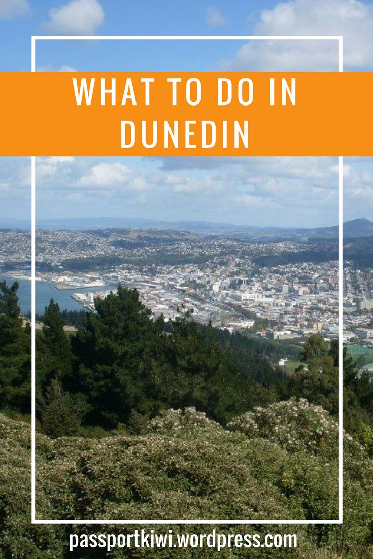 Ah Dunedin. Located 2.5hrs from my home town, Dunedin is a town I know well. I lived there for three years while attending The University of Otago. Scottish influence, a student vibe, beaches,
