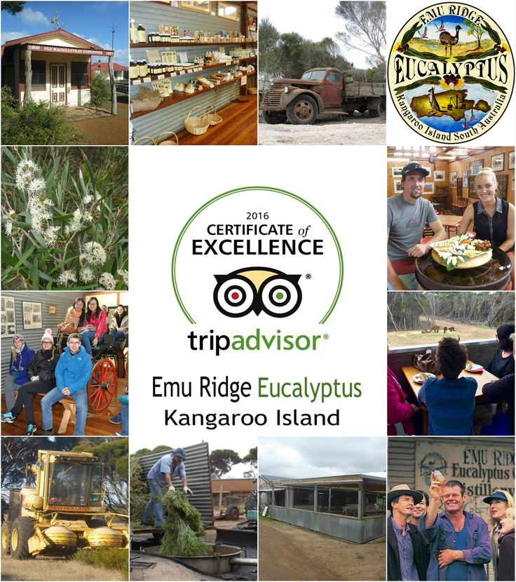 Emu Ridge are thrilled to announce that we have once again been awarded the TripAdvisor Certificate of Excellence.