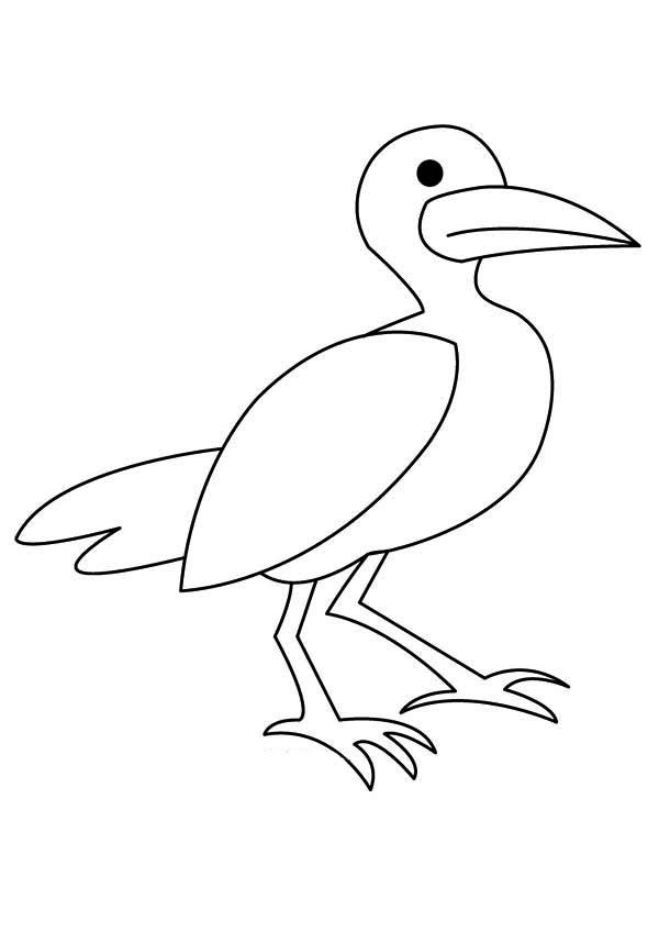 Seagull Coloring Pages Best Coloring Pages For Kids In 2021 Bird Coloring Pages Coloring Pages Coloring Pages For Kids