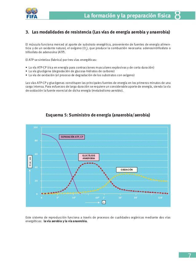 Cap 8 Fifa La Formación Y La Preparación Física Fifa Física Preparación