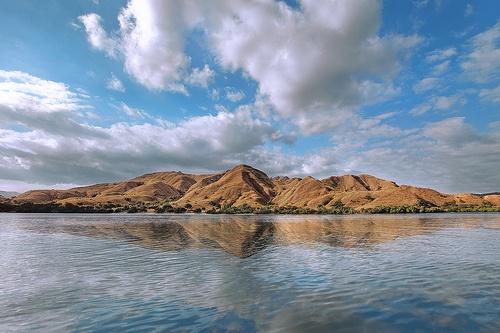 Rinca Island    Nusa Tenggara Timur, Indonesia