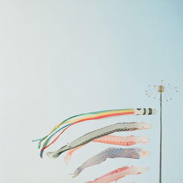 KoinoboriFlickr, Inspiration, Coloful Windplay, Colors, Fish Flags, Artsy Fartsy, Dreams Of Japan, Japanese, De Photos