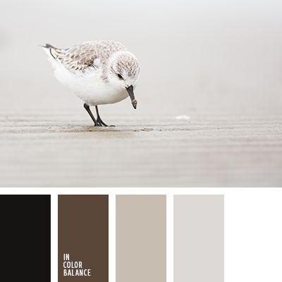 Color Palette No. 2011