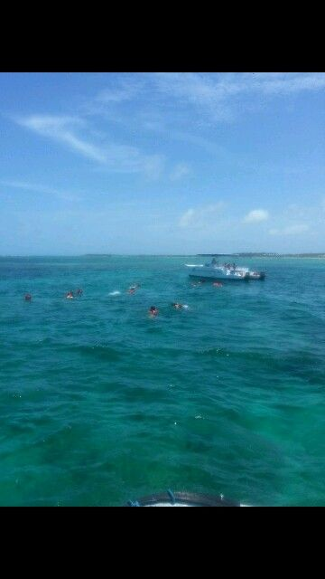 Snorkeling in the Domincan (Aug 2013)