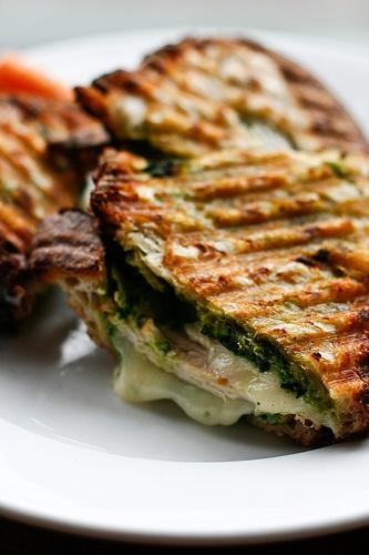 Paninis, Turkey and Turkey panini on Pinterest