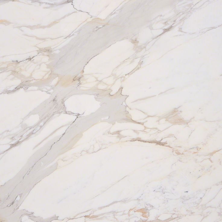 Calacatta Gold Marble Natural Stone Collection | M S International Inc.