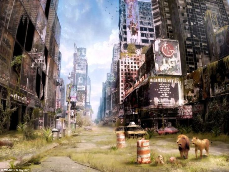 Welcome to the jungle: This image of New York's Times Square from Russian artist Vladimir Manyuhin's Life after the Apocalypse is reminiscent of scenes from the 2007 film I am Legend