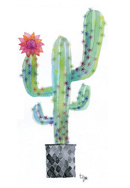 más de 25 ideas increíbles sobre cactus dibujo en pinterest