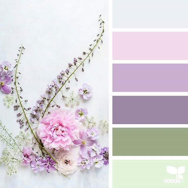 today's inspiration image for { flora tones } is by @c_colli ... thank you, Cristina, for another breathtaking #SeedsColor image share!